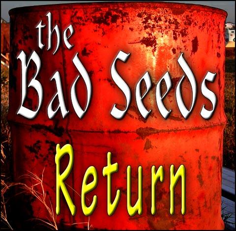 thebadseeds_return_med